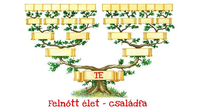 felnott_elet_csaladfa1.jpg