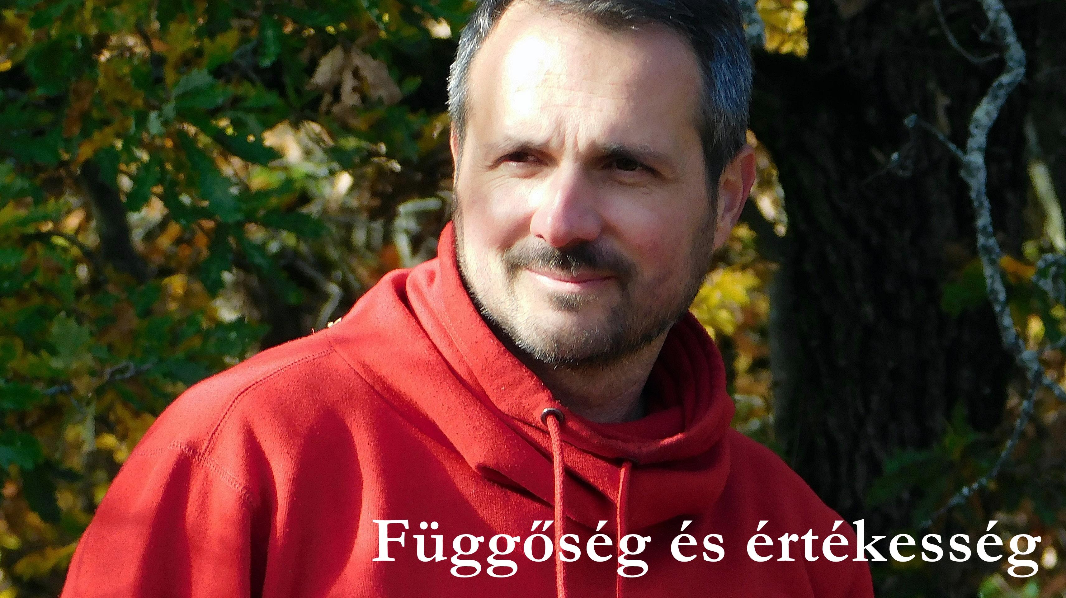 fuggoseg_es_ertekesseg.JPG