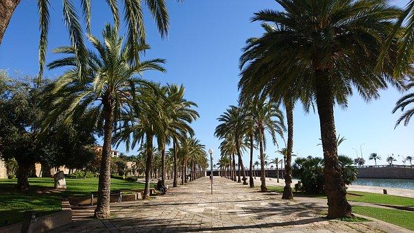 palma-de-mallorca-3794232_340.jpg