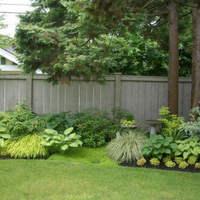 Mit ültessünk árnyékos helyre a kertben? (5. rész)