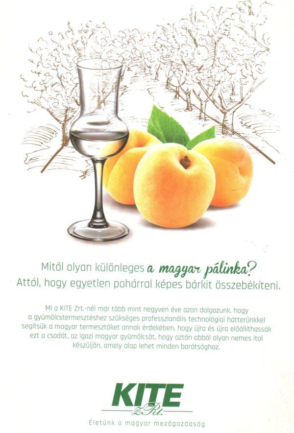 palinka_s2.jpg