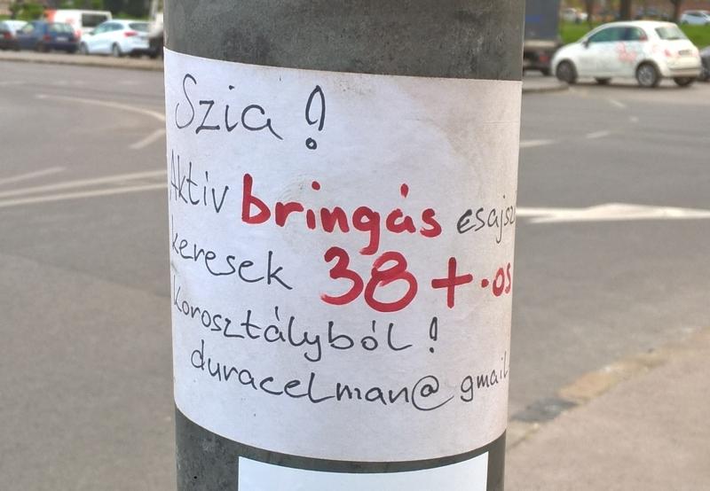 aktiv_bringas.jpg