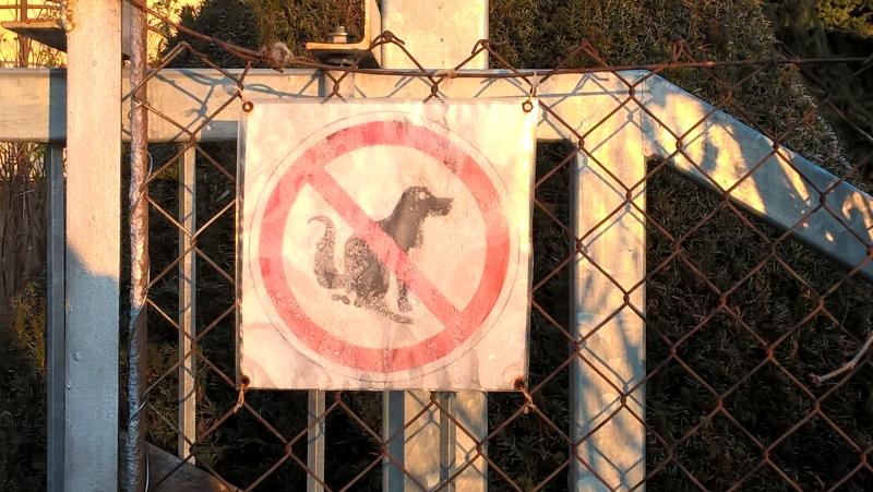 ne_szarasd_a_kutyadat.jpg