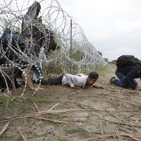 Kirúgták a tolmácsokat, mert nem gyűlölték eléggé a migránsokat