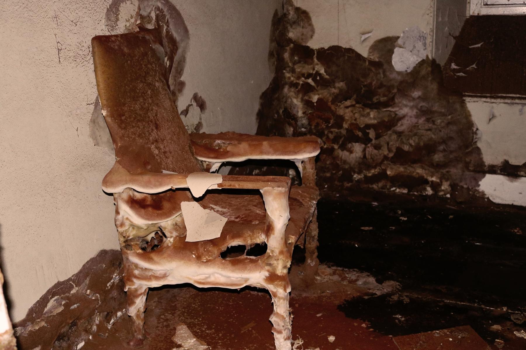 Ez a kedvenc képem...egy gombával benőtt szék az egykori gumiszoba sötétségében