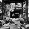 A fényképező dadus - Vivian Maier (1926-2009)