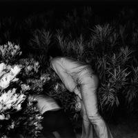 Kohei Yoshiyuki: A park (18+)