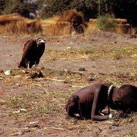 Kevin Carter Pulitzer-díjas képe - A keselyű és a kislány (1993)