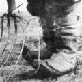Ezredvégi fotók - Válogatás Tabák Lajos (1904-2007) lázító fotográfiából