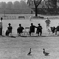 A HÉT FOTÓSA - Válogatás Wolfgang Suschitzky Londonban készült képeiből (1930-as évek)