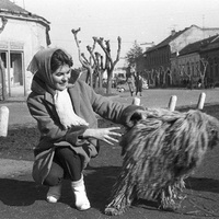 Magyarország 1964-ben - 30 fotó a Fortepan gyűjteményéből