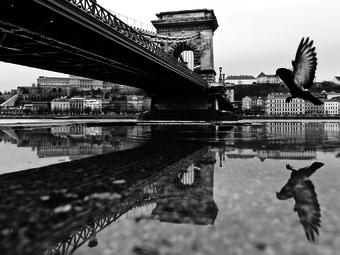 Fazekas István: Madárlátta Budapest