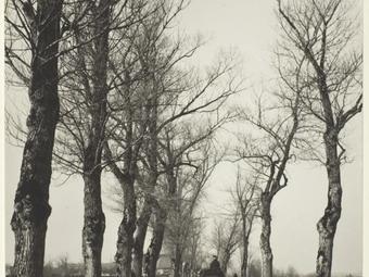 Fotós idézetek - Alfred Stieglitz (1864-1946)