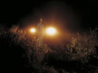 Taryn Simon: Az ártatlanok (2002)