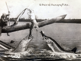 Abszurd jelenetek William H. Martin meghökkentő képeslapjain
