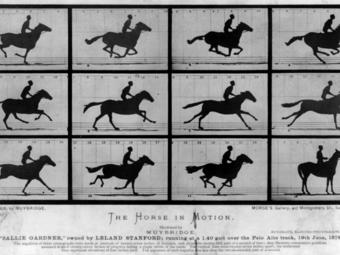 Muybridge lófotóinak története (1878)