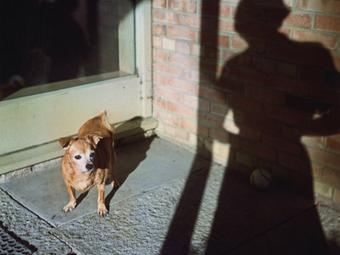 Ti kértétek - mi elhoztuk! Vivian Maier képei újra a Mai Manó Házban