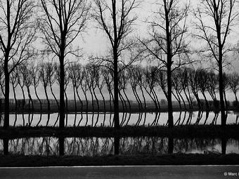 Fotó-kalendárium – Marc Riboud