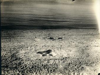 Egy 80 éves álhír története - 1937-ben jelentek meg a rejtélyes nantucketi lábnyomok képei