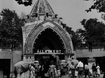 12 régi fotó a 150 éves budapesti állatkert életéből