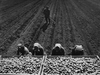Lazukics Anna: Képes időutazás Jugoszláviába (1954-1989)