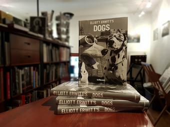 Válogatás a ma 89 éves Elliott Erwitt fotóalbumaiból
