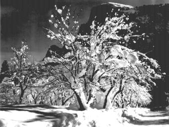 Fotós idézet - Ansel Adams (1902 - 1984)
