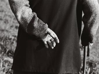 Jutka Rona: Túlélők