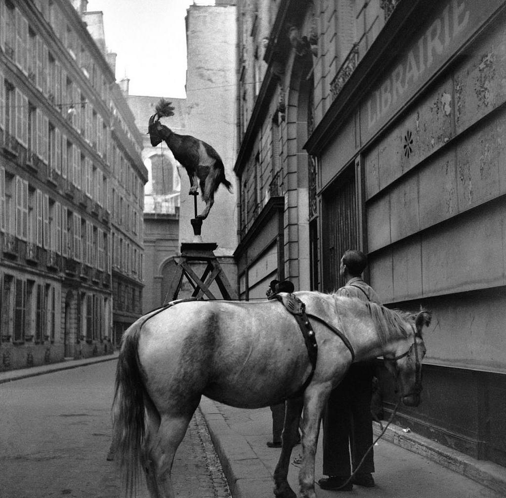 Fotó: Edouard Boubat: Rue Servandoni, Paris, 1948 © Edouard Boubat