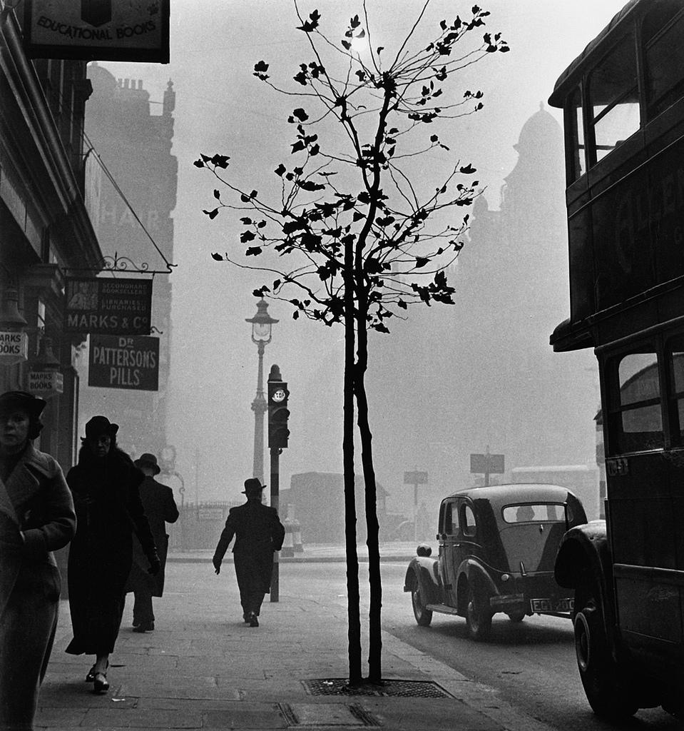 Fotó:Wolfgang Suschitzky: London, 1937 © Wolfgang Suschitzky