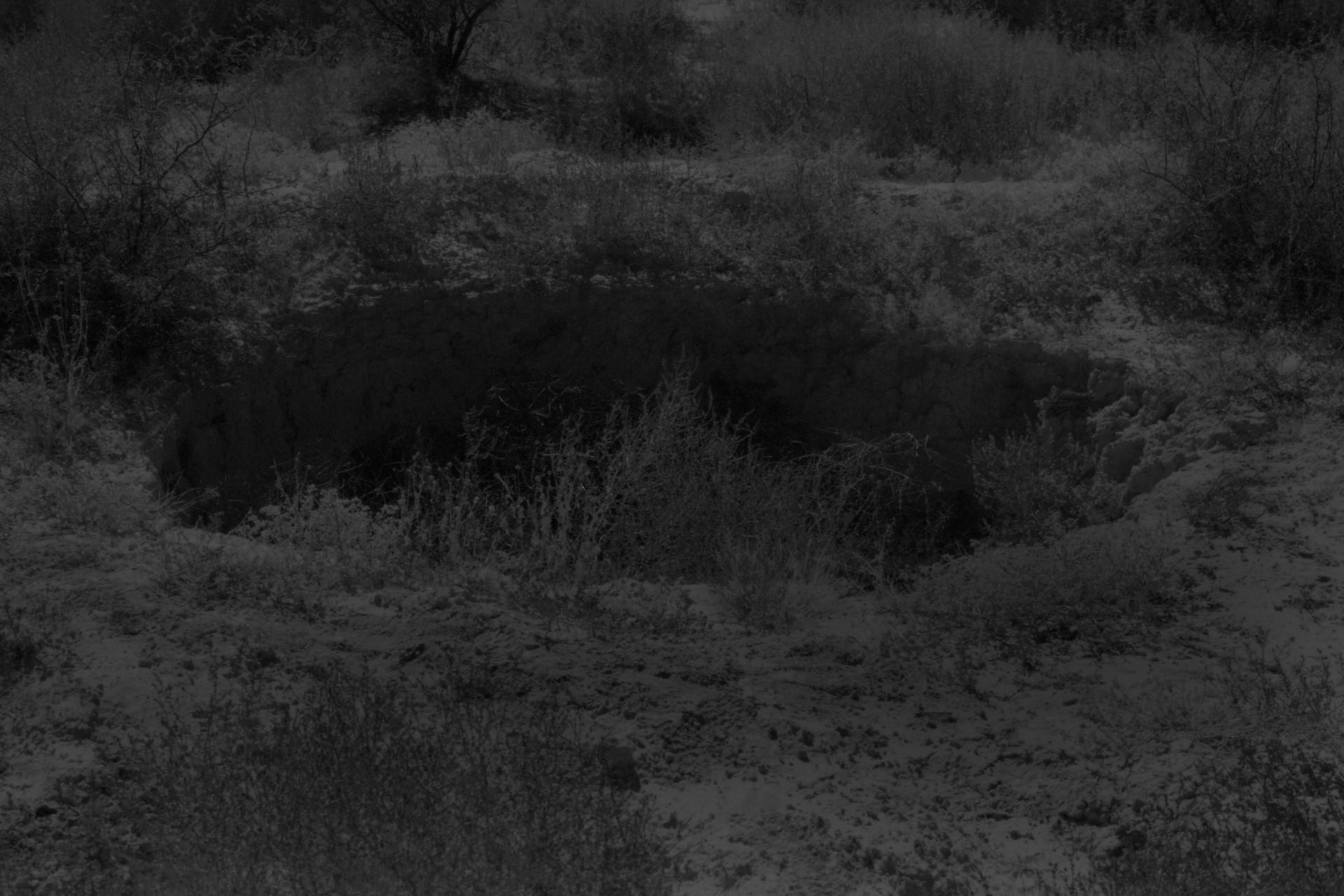 Fotó: Koleszár Adél: Tömegsír helyszíne Torreonban, részlet Az erőszak sebei című sorozatból