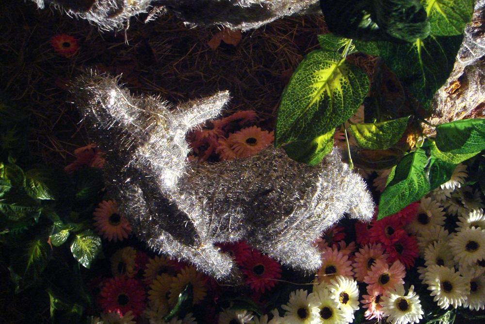 Fotó: Elek Judit Katalin: 2008. 11. 28., Részlet az Antitabu sorozatból