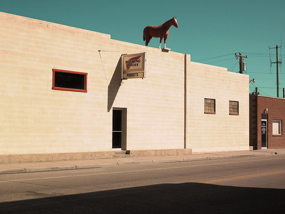 horseontheroof_am_idler.jpg
