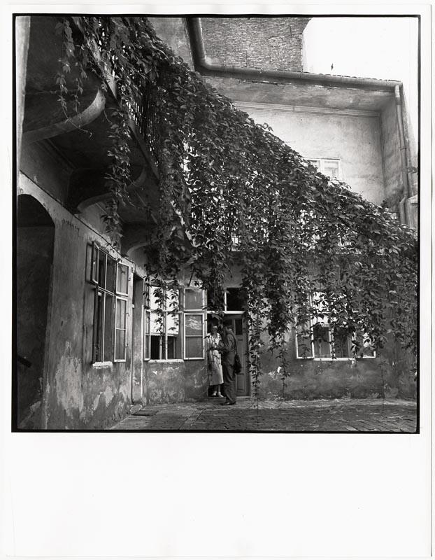 Fotó: Kálmán Kata: Udvar vadszőlővel 1935. k. © Magyar Fotográfiai Múzeum