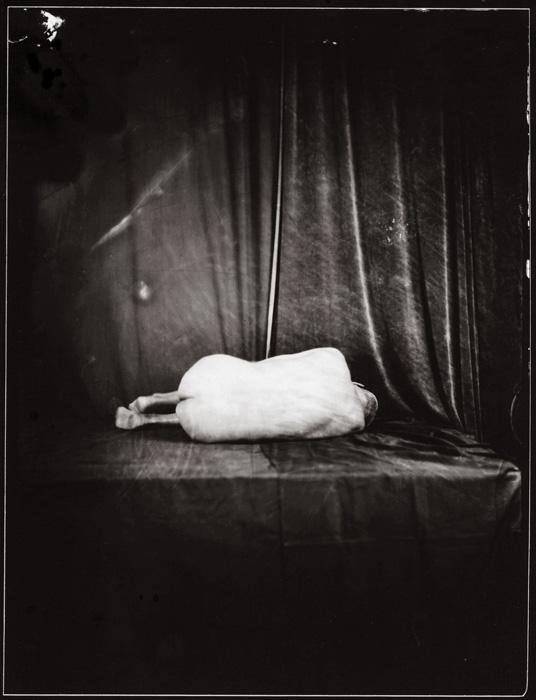 Fotó: Kerekes Gábor: Embrió