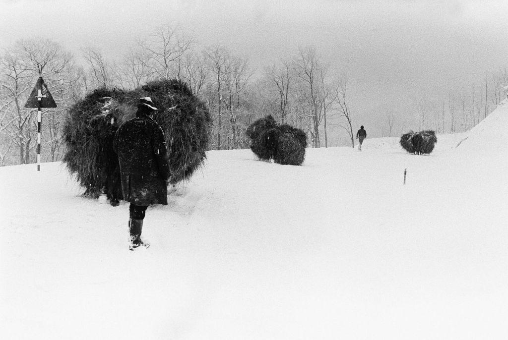 Fotó: Lazukics Anna: Hófúvásban, Tarcal, 1974