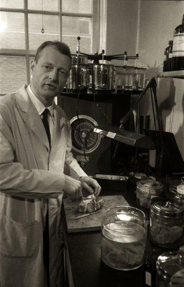 Fotó: Ralph Morse: Dr. Thomas Harvey munka közben, Einstein halálának a napján, 1955. április, Princeton Kórház © Ralph Morse/Time & Life Pictures/Getty Images