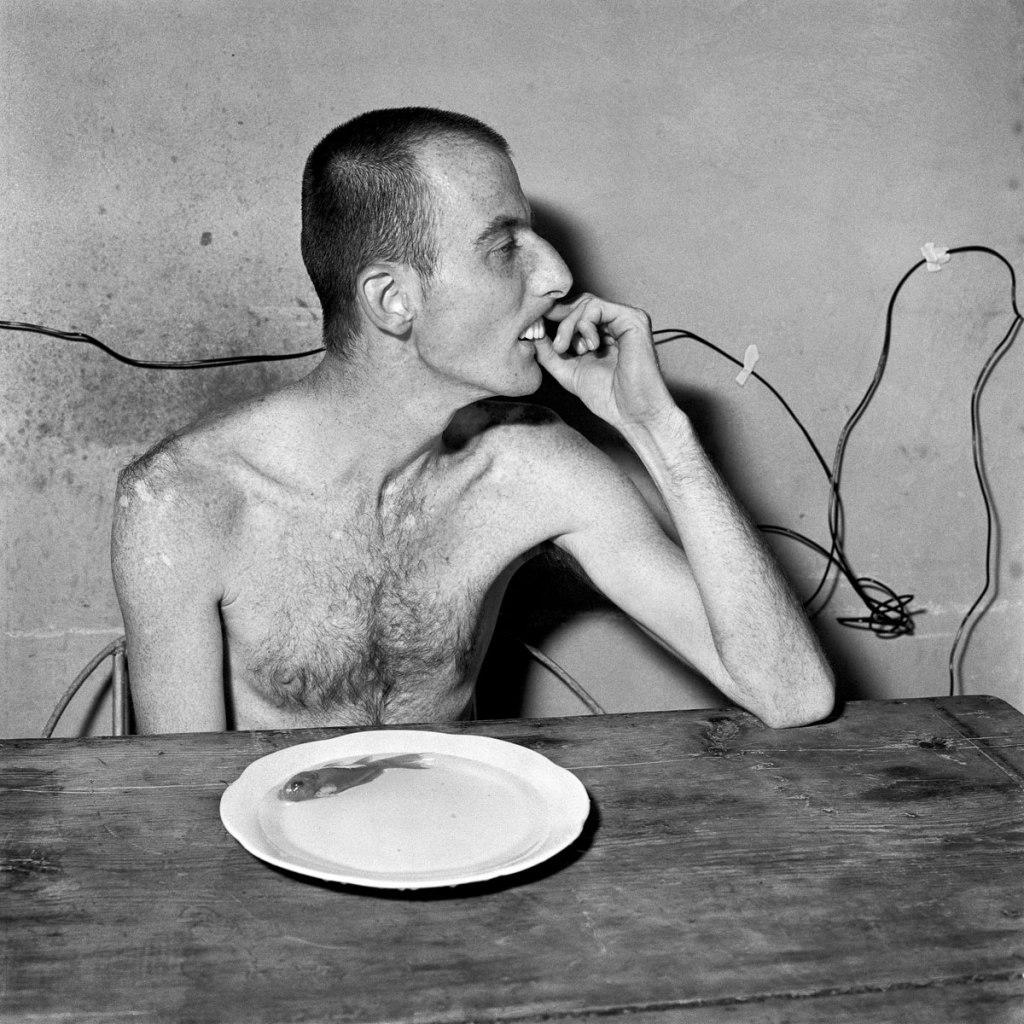 Fotó: Roger Ballen: Lunchtime, 2001 © Roger Ballen/Stills Gallery