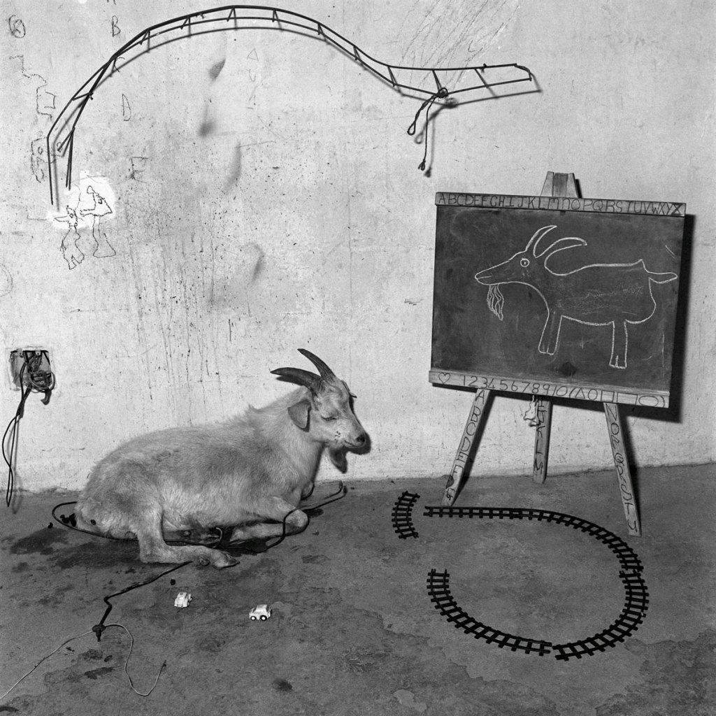 Fotó: Roger Ballen: School Room, 2003 © Roger Ballen/Stills Gallery