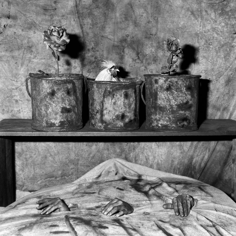 Fotó: Roger Ballen: Three hands, 2006 © Roger Ballen/Stills Gallery