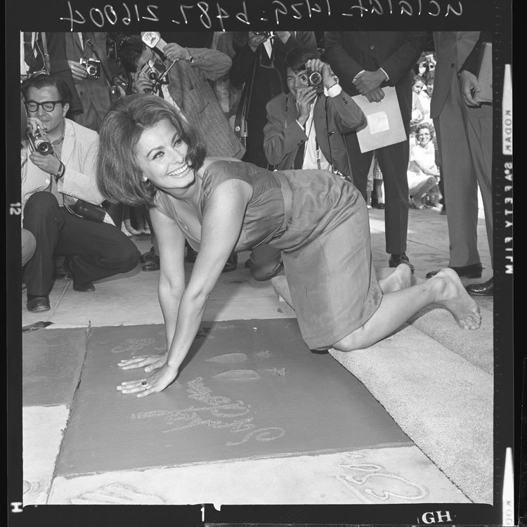 Fotó: Sophia Loren, Hollywood Walk of Fame, 1962 © UCLA Library/Los Angeles Times
