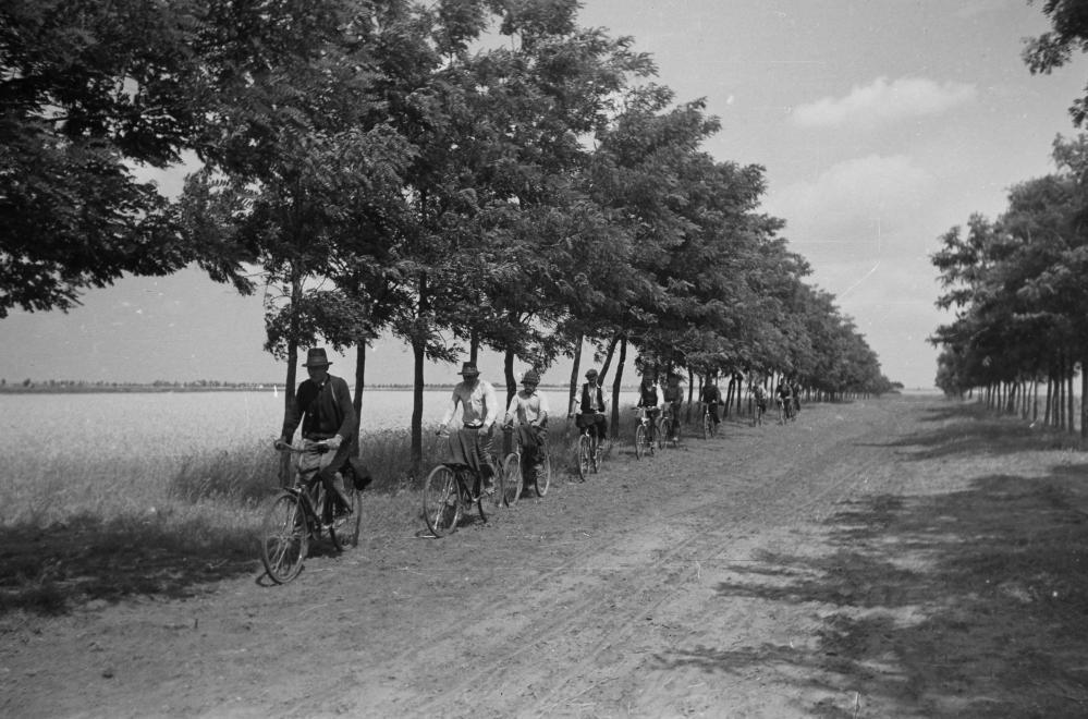Fotó: Kunszentmiklós, kerékpárral indul a földekre a brigád. 1949 © fortepan.hu/Kovács Márton Ernő