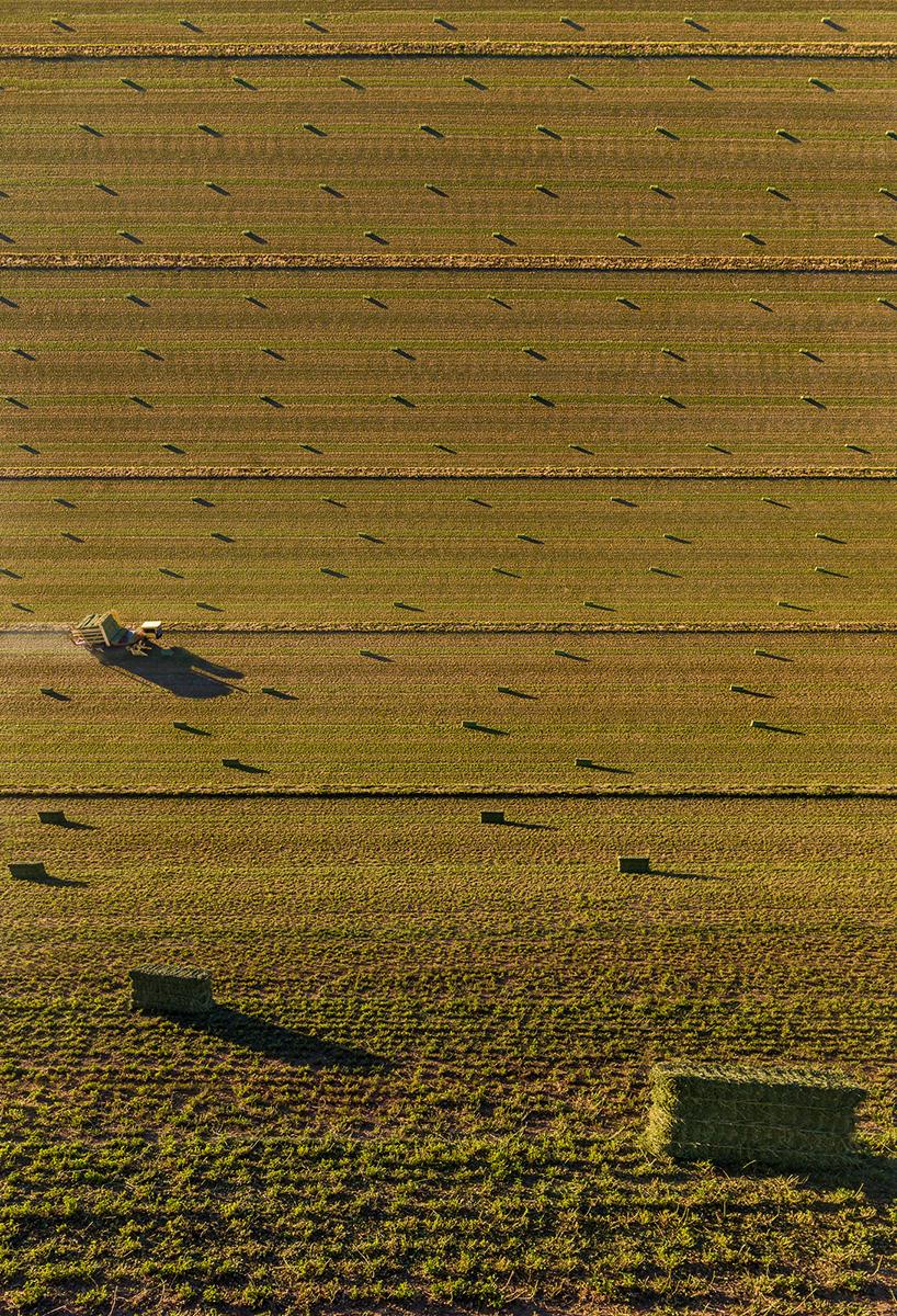 Fotó:Aydın Büyüktaş: Harvest Time, Részlet a Síkföld című sorozatból © Aydın Büyüktaş