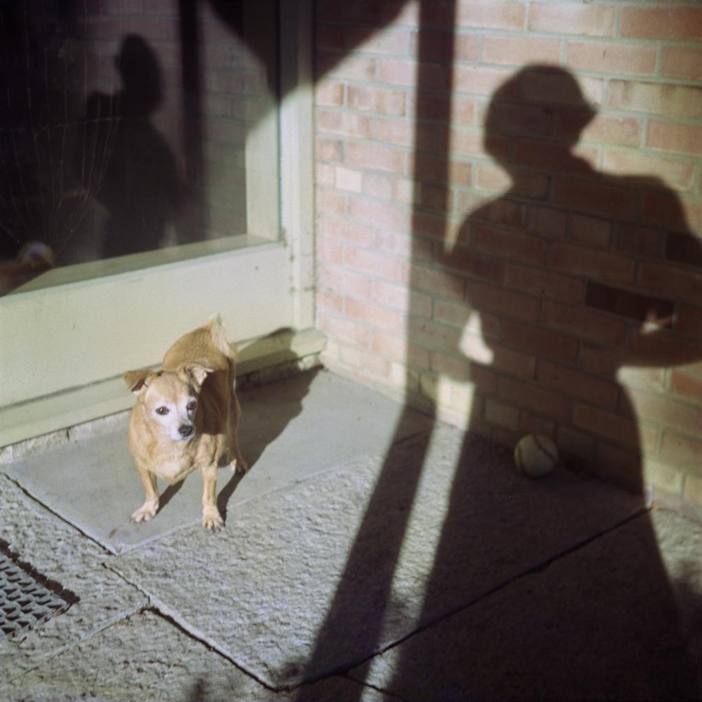 Fotó: Vivian Maier: Önarckép, Chicago környéke, d.n. © Vivian Maier/Maloof Collection, Courtesy Howard Greenberg Gallery, New York.