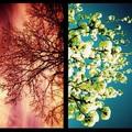 Április & Október