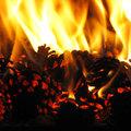 Kályha, tűz