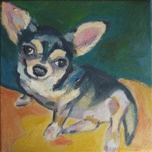 kutya1_kicsi.jpg