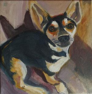 kutya2_kicsi.jpg