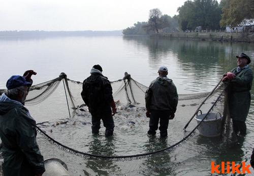 lehalászás
