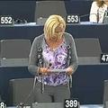 Európai értelemben vett románságteljesítmény